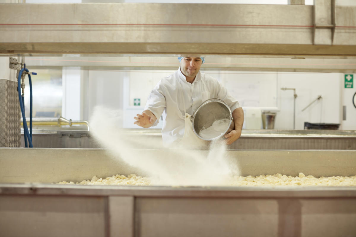 Digital Days Out Monday 13th April: Cheese-making Step 7 - Salting