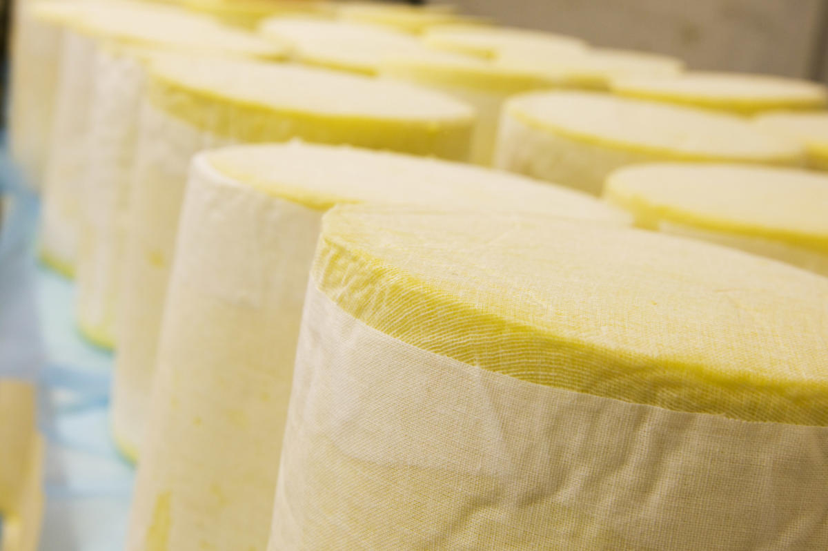 Digital Days Out Thursday 16th April: Cheese-making Step 10 - Pressing